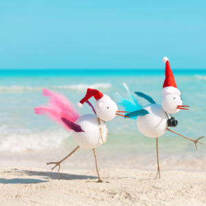 Pilates is the perfect exercise for Snowbirds